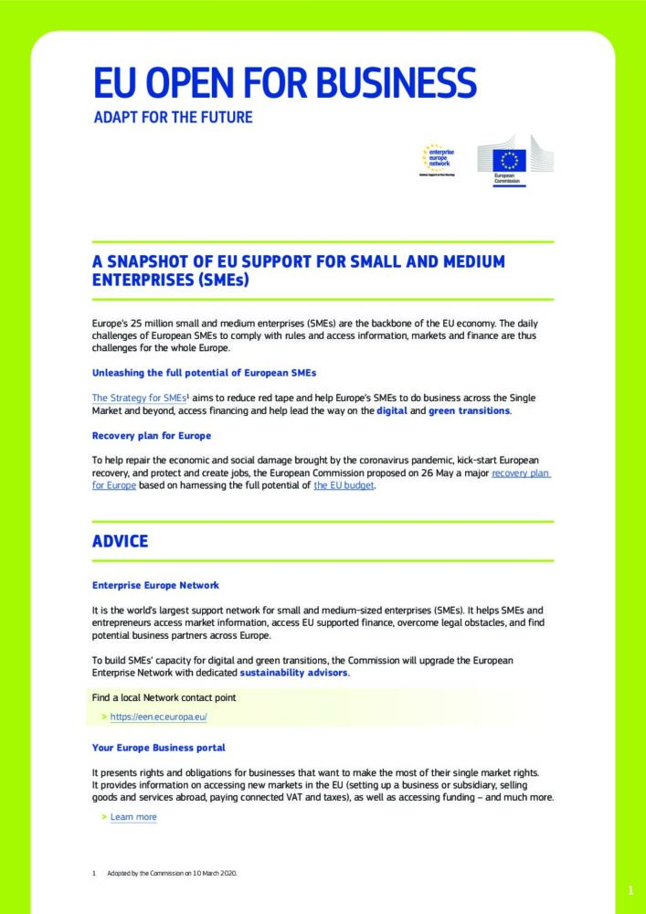 EU Support for SMEs